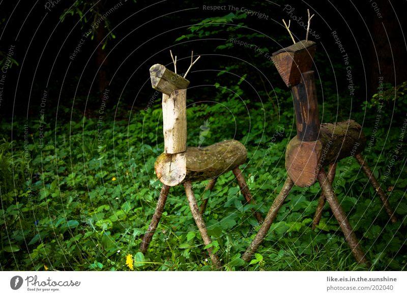 Tree Green Plant Summer Animal Forest Grass Garden Wood Park Brown Art Bushes Observe Wild animal