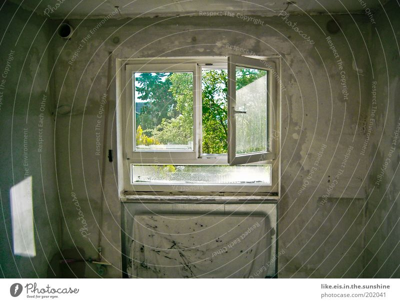 Take a breath. House building Redecorate Sunlight Wall (barrier) Wall (building) Window Dirty Plaster Subdued colour Copy Space left Copy Space right