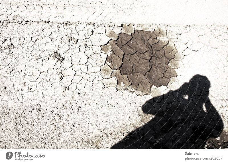 Nature Death Warmth Bright Environment Earth Gloomy Threat Climate Desert Hot Dry Photographer Crack & Rip & Tear Take a photo Drought