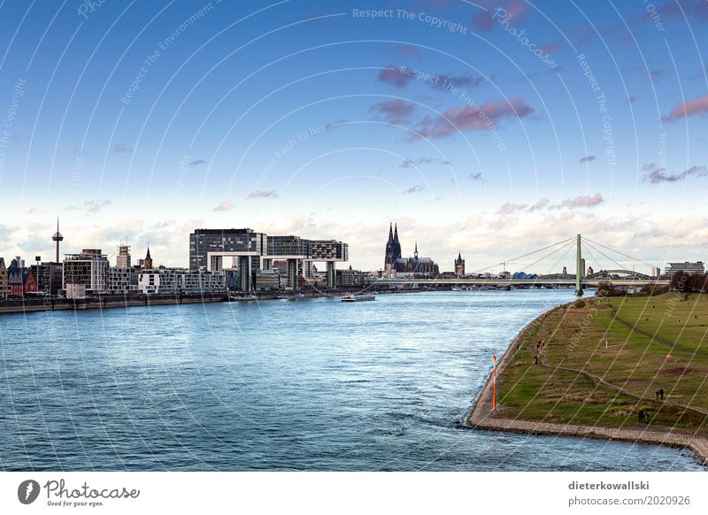 Cologne Town Skyline Tourist Attraction Landmark Dome Natural Panorama (View) Severins bridge Cologne Cathedral Rhine River Bollard Meadows Dusk City