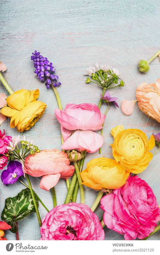 Colorful summer flowers for bouquet Style Design Summer Decoration Mother's Day Wedding Birthday Nature Plant Spring Flower Leaf Blossom Bouquet Blossoming Love