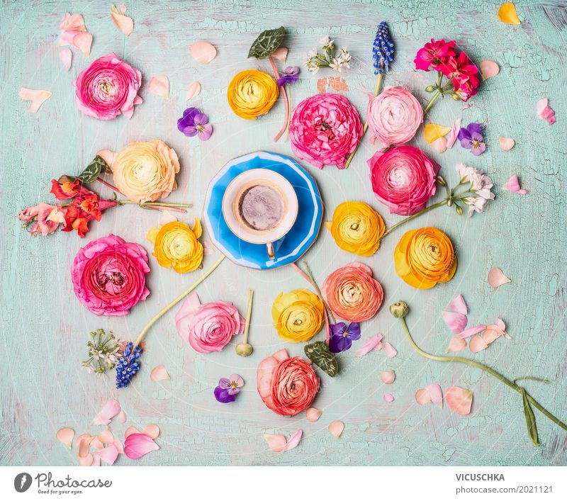 Nature Summer Flower Leaf Blossom Interior design Love Style Feasts & Celebrations Design Pink Decoration Retro Birthday Beverage Coffee