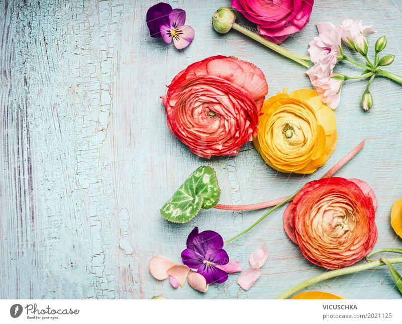 Summer Flowers Composing Style Design Garden Feasts & Celebrations Mother's Day Birthday Nature Plant Rose Decoration Bouquet Blossoming Love Pink