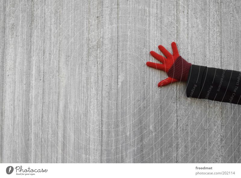 Hand Red Cold Gray Arm Fingers Contact Gloves Sustainability Minimalistic Thrifty Young woman Human being Concrete wall