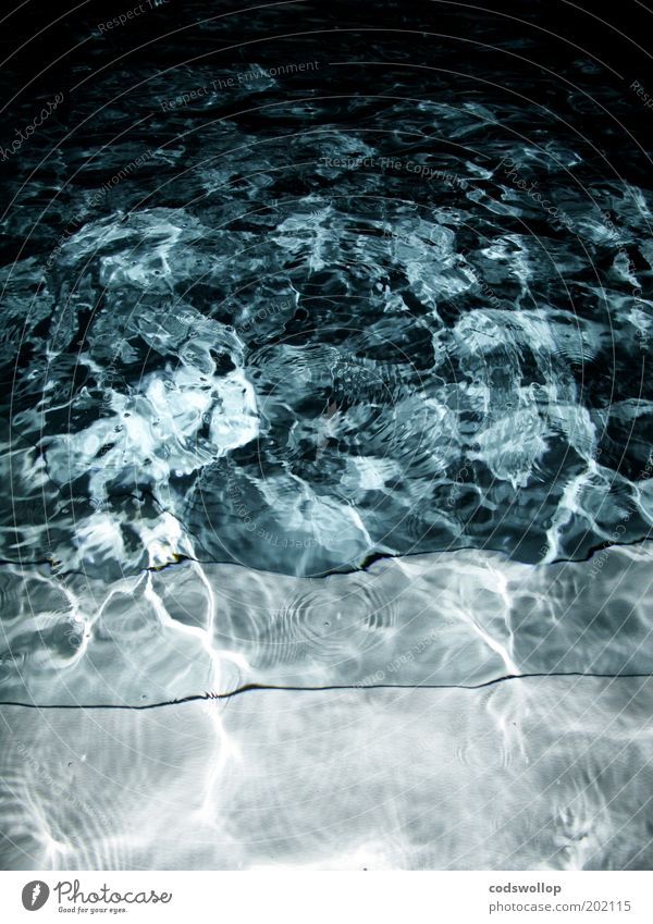 nightswimming Water Wet Blue Swimming pool Night Colour photo Exterior shot Abstract Structures and shapes Flash photo Reflection Deserted Stairs