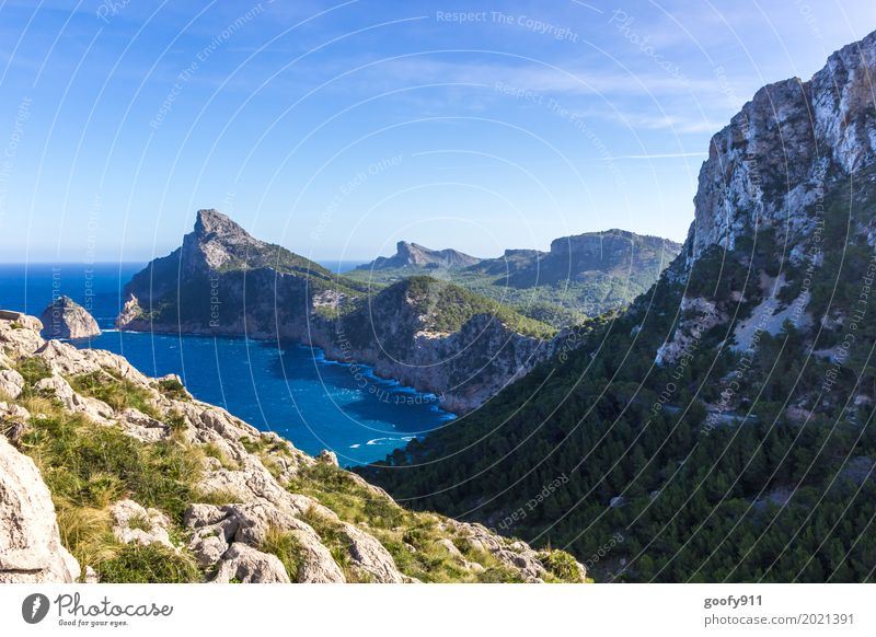 Majorca's Coast Environment Nature Landscape Plant Animal Air Water Sky Sun Summer Beautiful weather Warmth Bushes Hill Mountain Bay Ocean Spain Europe