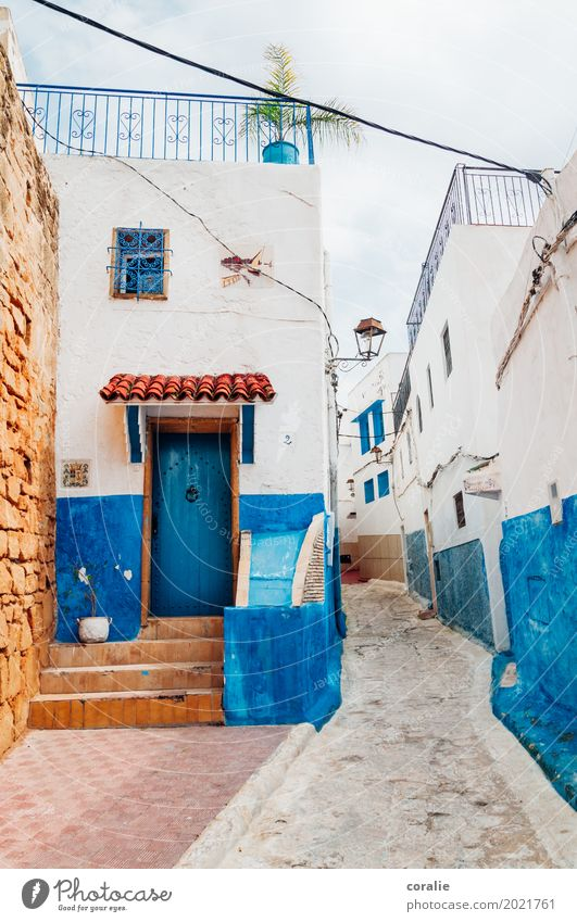 Blue miracle Town Capital city Downtown Old town House (Residential Structure) Living or residing Rabat Blue-white Facade Sidestreet Alley Narrow Roof terrace