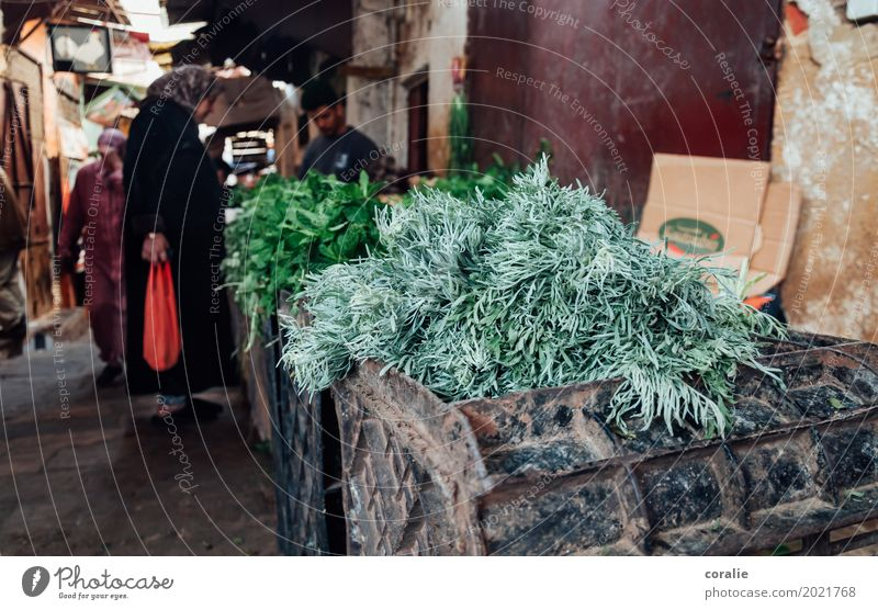 Travel photography Fresh Poverty Shopping Herbs and spices Village Old town Fragrance Alley Markets Small Town Marketplace Photos of everyday life