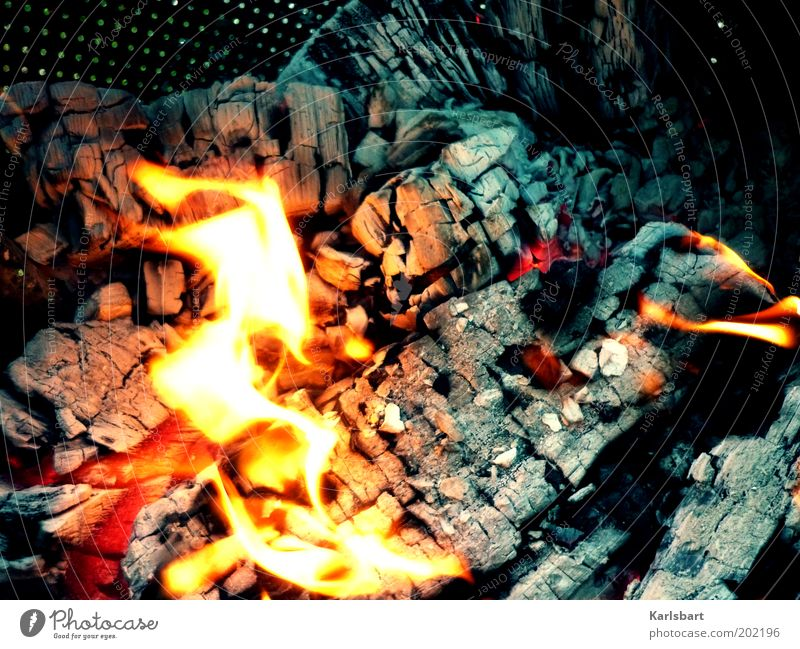 Nature Summer Warmth Movement Wood Garden Feasts & Celebrations Power Cooking & Baking Warm-heartedness Fire Hot Flame Burn Barbecue (apparatus) Closing time