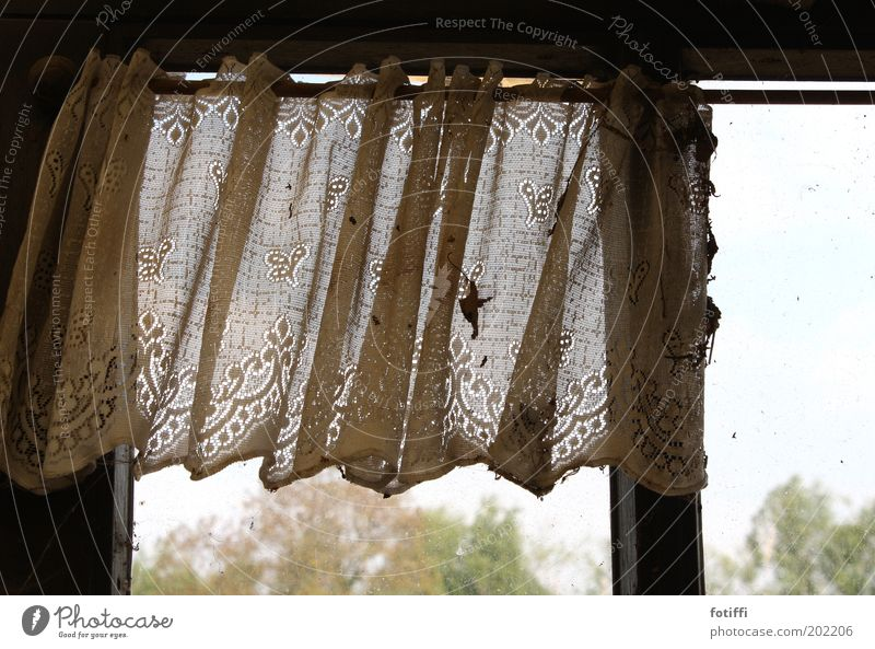 curtain of grey^^ Deserted Window Hang Dirty Longing Homesickness Curtain Pattern Tree Sky Undulating Rod Gloomy Shabby Forget Remainder Former Memory