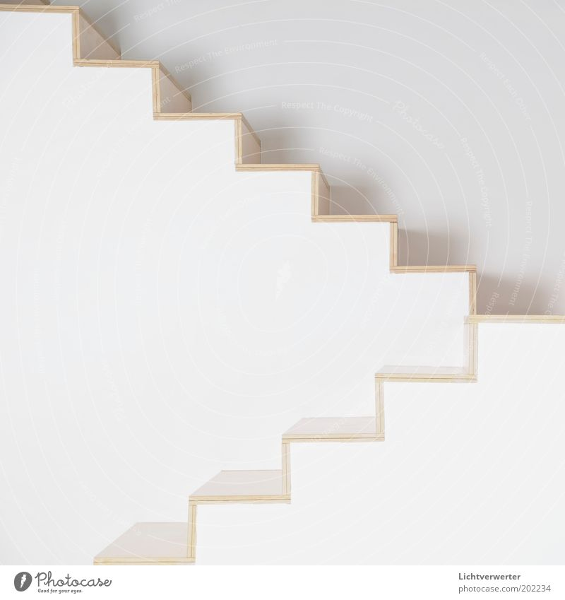 White House (Residential Structure) Wall (building) Above Wood Stone Wall (barrier) Art Architecture Stairs Modern Clean Abstract Under Sharp-edged