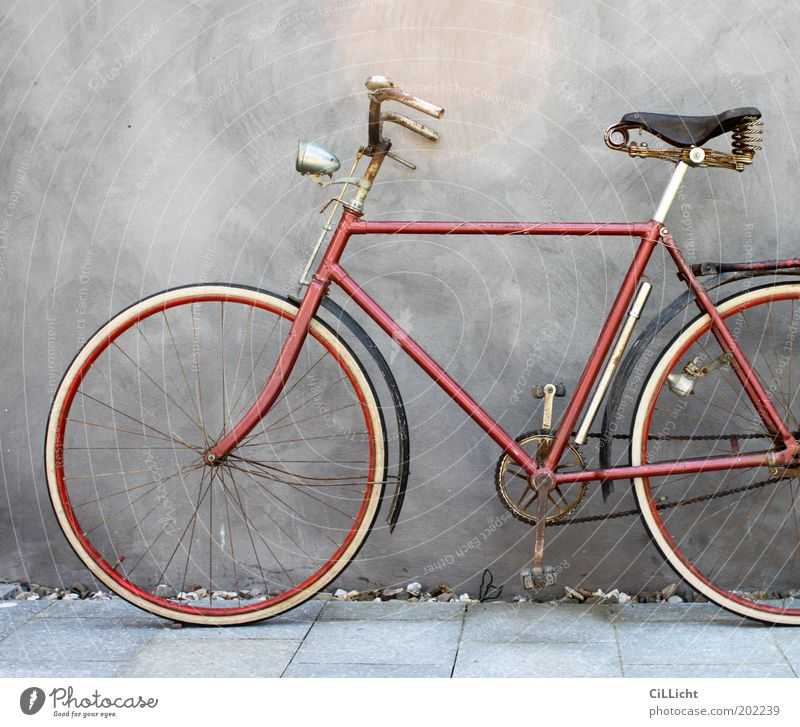 My beloved red bicycle Elegant Style Leisure and hobbies Trip Freedom Bicycle Summer Wall (barrier) Wall (building) Rust Old Esthetic Hip & trendy Original