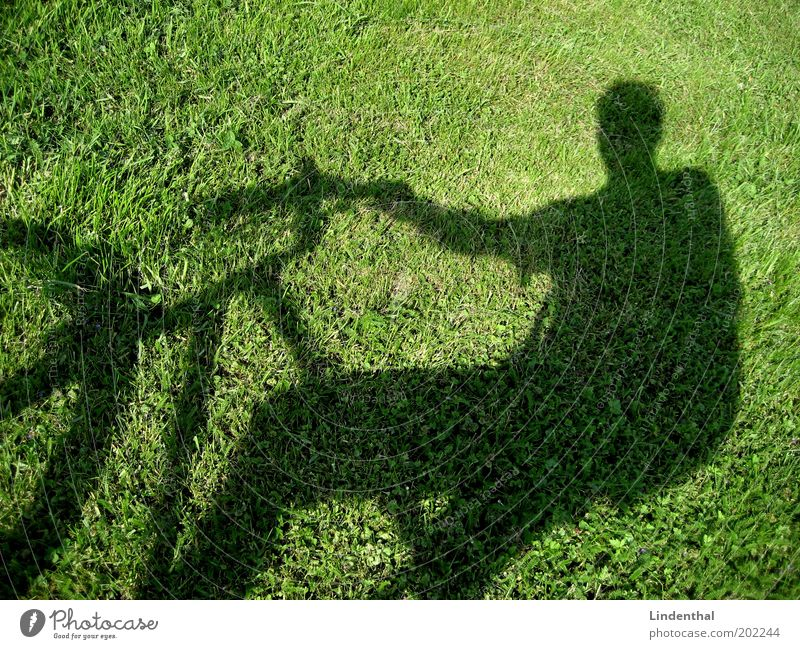 Cycling on the meadow Human being Masculine Man Adults Meadow Driving Green Bicycle Break Exterior shot Copy Space top Day Light Sunlight Shadow Silhouette