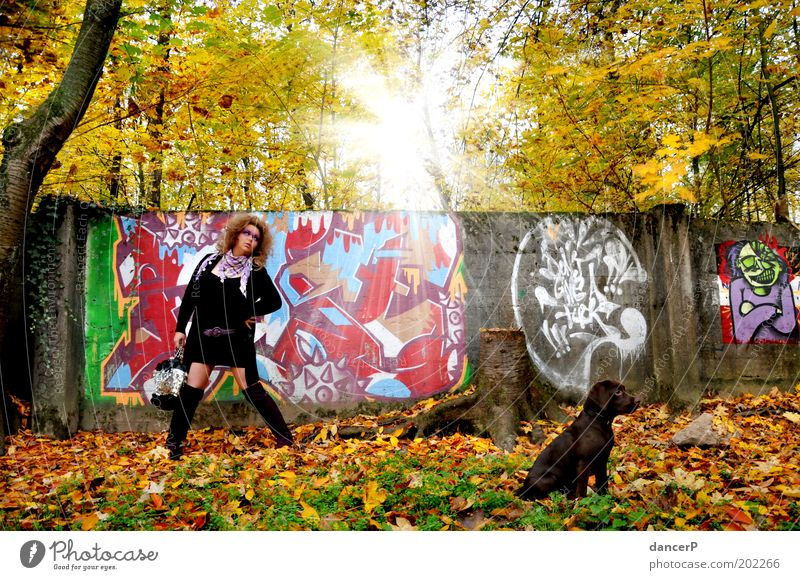 Crazy Girl goes for a walk Woman Lady Clothing Bag Boots Dog Puppy Walk the dog To go for a walk Forest Tree Wall (barrier) Painting (action, artwork) painting