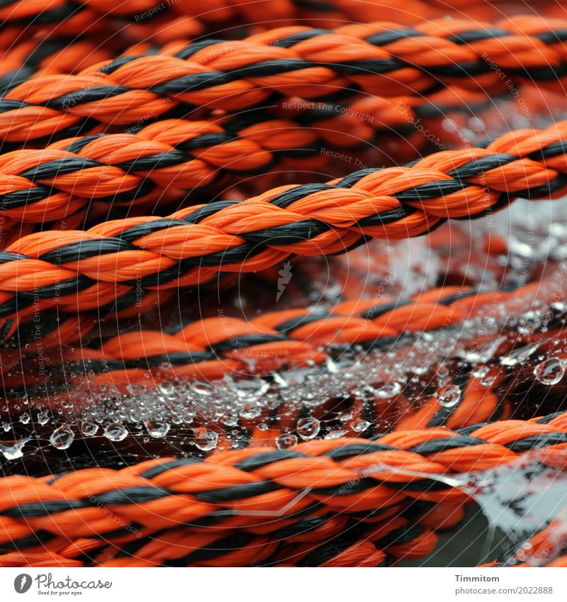 Water Black Orange Drops of water Wet Simple Rope Plastic Firm Dew Plaited