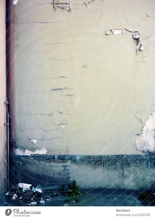 Old Wall (building) Wall (barrier) Architecture Building Dirty Facade Corner Change Transience Derelict Decline Manmade structures Plaster Crack & Rip & Tear