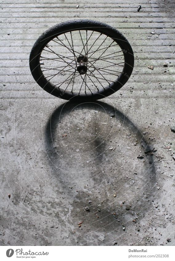 Black Movement Gray Line Bicycle Concrete Stand Circle Hope Stripe Round Historic Rotate Wheel Ease Roll