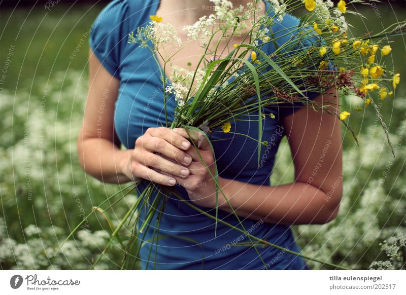 Human being Nature Hand Youth (Young adults) Flower Plant Summer Life Meadow Feminine Grass Happy Healthy Environment