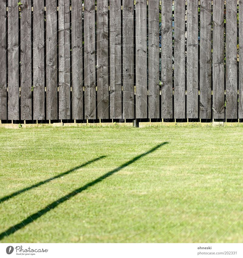 garden fence Plant Grass Garden Meadow Fence Wooden fence Green Colour photo Abstract Pattern Structures and shapes Day Light Shadow Contrast Sunlight