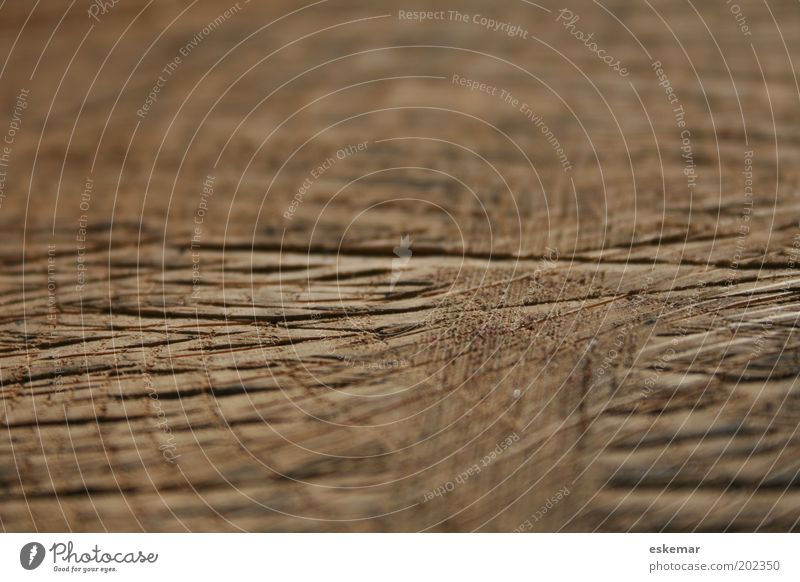 wood Wood Line Stripe Net Old Authentic Sharp-edged Natural Brown Experience Transience Furrow Notches Structures and shapes Pattern Tracks Colour photo