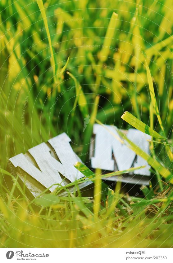 Green Soccer Design Lawn Grass surface Letters (alphabet) Advertising Playing field Blade of grass Sporting event Beautiful weather Expectation