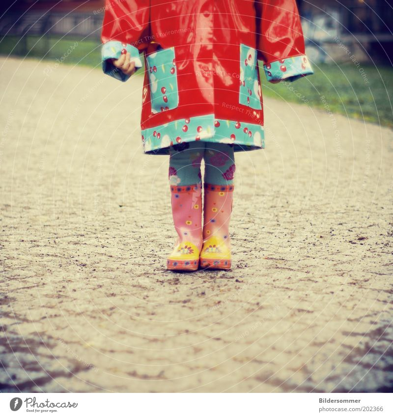 Human being Child Blue Red Girl Autumn Lanes & trails Funny Pink Rain Infancy Wet Hip & trendy Toddler Freeze Bad weather