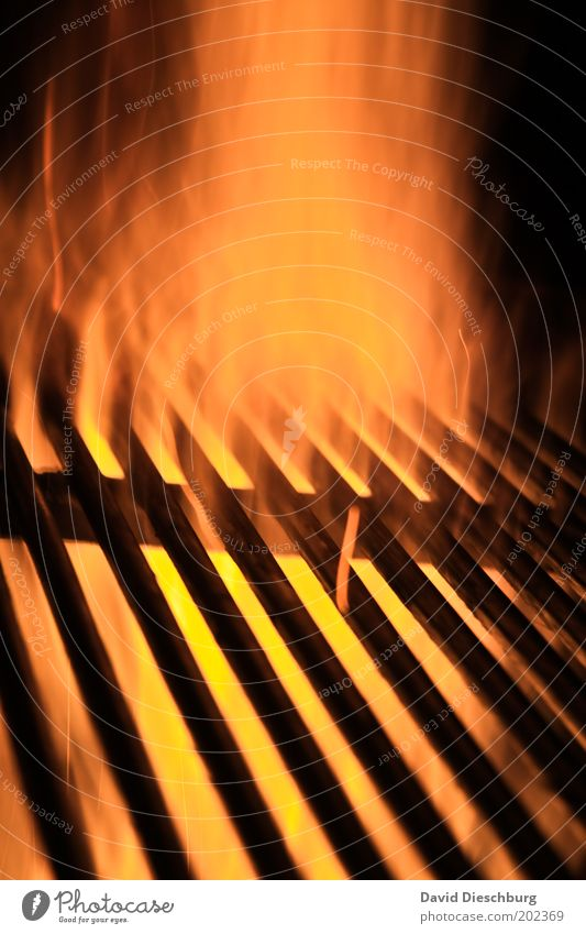 My stomach growls... Yellow Red Black Orange Flame Fire Spark Embers Barbecue (event) Grill BBQ season Warmth Hot Grating Metal grid Line Colour photo