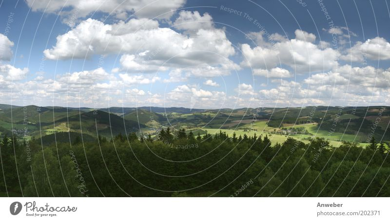 Panorama Hochsauerland from Wilzenberg Environment Nature Landscape Sky Clouds Horizon Summer Beautiful weather Plant Meadow Field Forest Mountain Sauerland