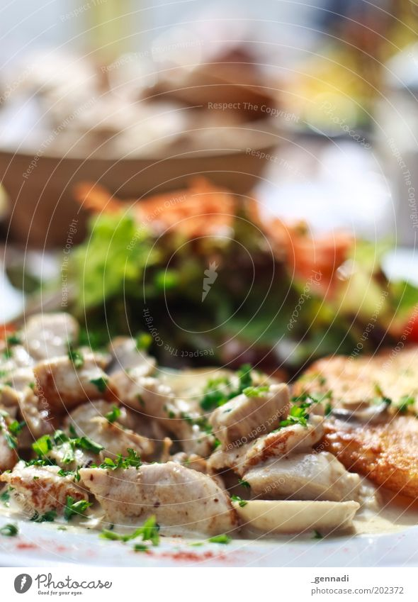 eat food Food Meat Lettuce Salad Grain Nutrition Lunch Crockery Plate Bowl To enjoy Hot Delicious Tourism Herbs and spices Dish Colour photo Exterior shot