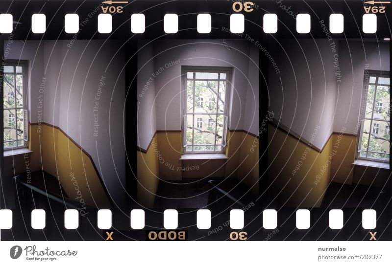 Tree House (Residential Structure) Yellow Dark Window Above Style Art Going Stairs Living or residing Lifestyle Gloomy Film End Beautiful weather