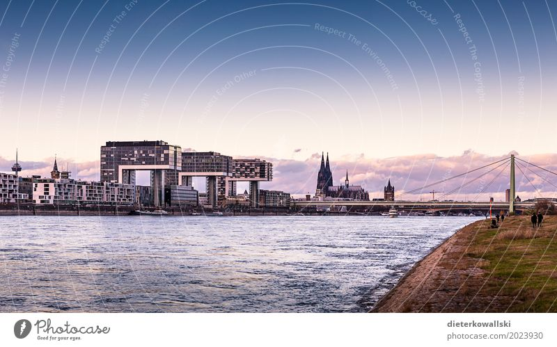 Panorama Cologne Town Dome Tourist Attraction Monument Bridge Inland navigation Beautiful Severins bridge Cologne Cathedral Skyline Rhine Navigation Dusk