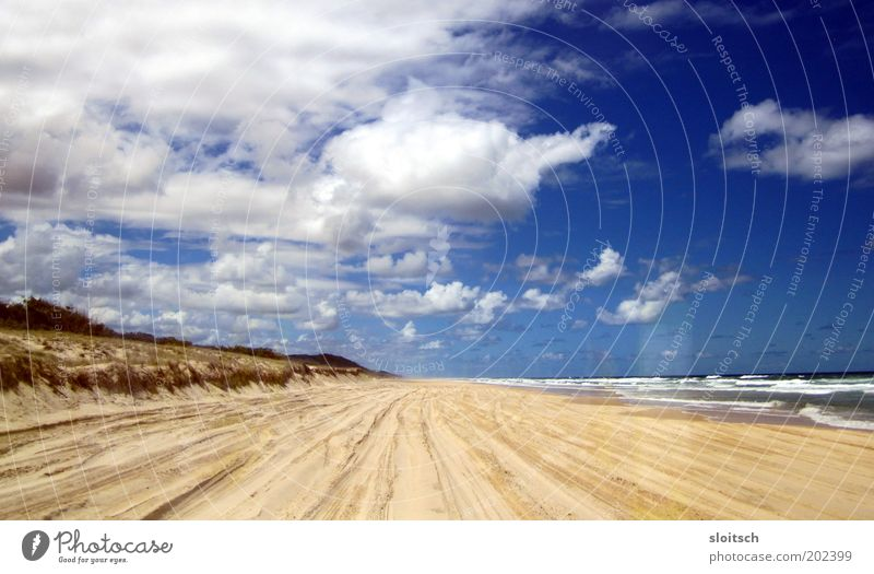 beach Far-off places Freedom Ocean Sand Water Clouds Horizon Sun Hope Day Central perspective Beach Beach dune Blue