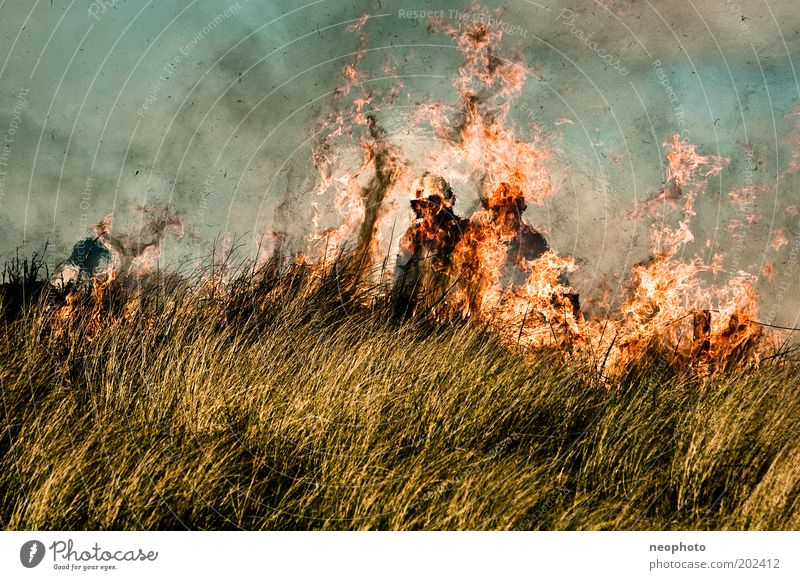 Ocean Dark Air Power Blaze Force Fire Dangerous Threat Creepy Smoke Stress Beach dune Fight North Sea Fireman