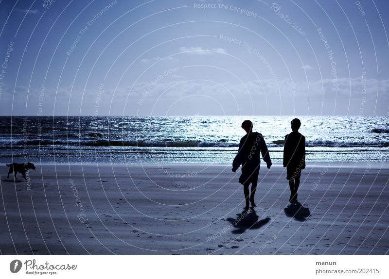 dos niños con el perro Lifestyle Well-being Relaxation Vacation & Travel Tourism Beach Boy (child) Young man Youth (Young adults) Brother Friendship Infancy 2
