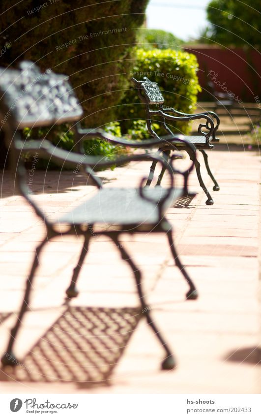Places Free in the sun Terrace Terracotta Brown Red Colour photo Exterior shot Deserted Day Blur Shallow depth of field Park Shadow Metal Bench Park bench