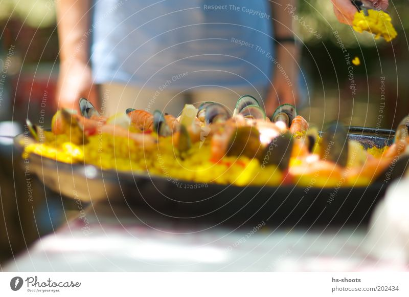 Hunger Paella with seafood Fish Nutrition Lunch Buffet Brunch Spain Rice Mussel Pan Summer Summer vacation Yellow Colour photo Exterior shot Day Blur