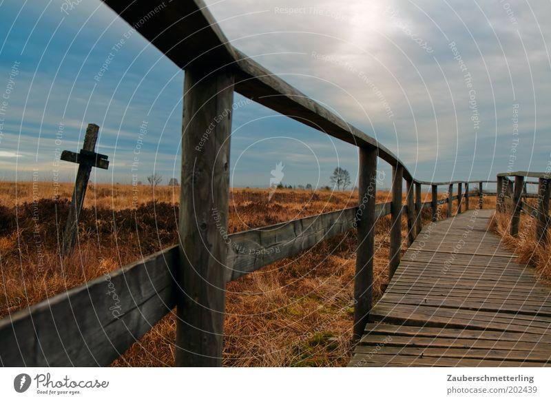 Nature Sky Calm Loneliness Far-off places Death Grass Lanes & trails Landscape Religion and faith Weather Horizon Hope Esthetic Bushes Target