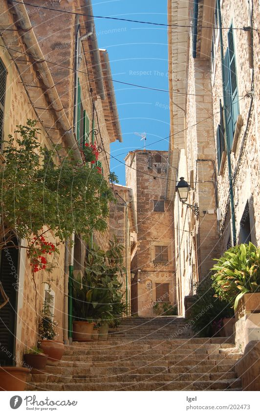 Lane in Fornalutx Spain Europe Village Old town Deserted House (Residential Structure) Wall (barrier) Wall (building) Stairs Facade Alley Spring fever