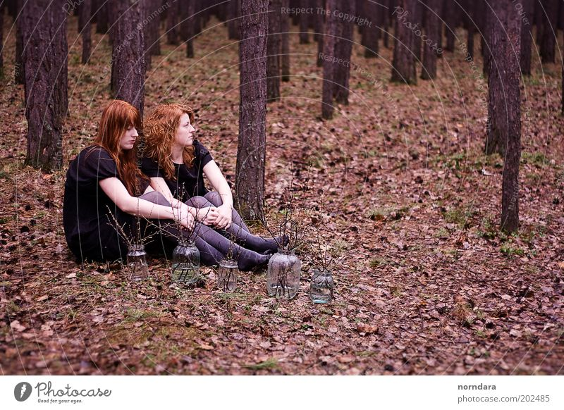 2 Dress Tights Red-haired Long-haired Curl Moody Beautiful Sadness Siberia silence Sister Forest Branch Evening Rain Autumn Foliage plant Tree Nostalgia