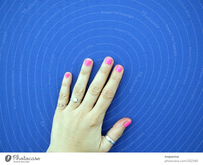 hand Feminine Young woman Youth (Young adults) Hand Fingers Wall (barrier) Wall (building) Accessory Jewellery Ring Blue Pink Kitsch Colour photo
