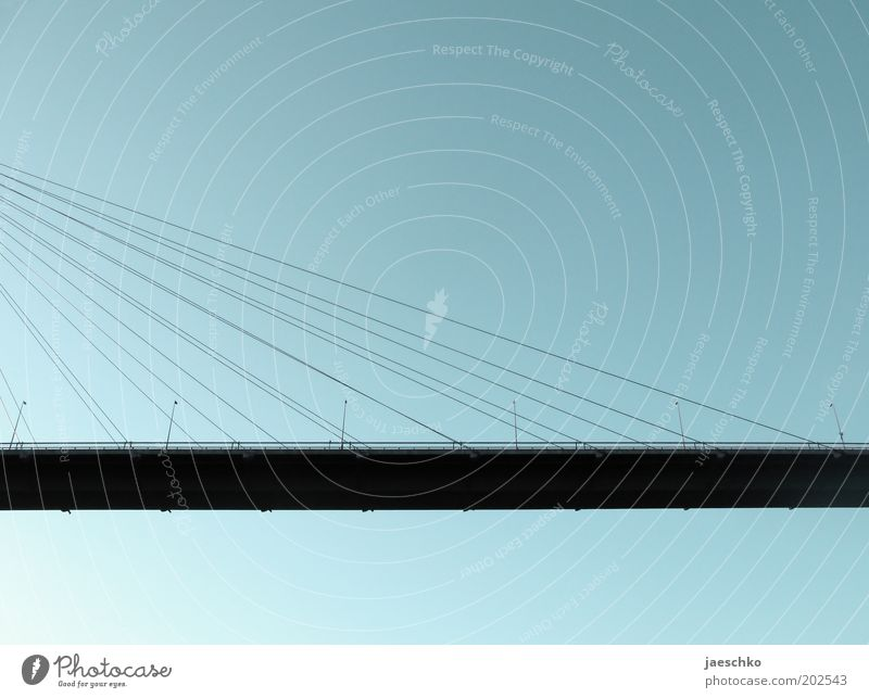 Street Architecture Lanes & trails Large Transport Esthetic Bridge Under Manmade structures Steel cable Traffic infrastructure Beautiful weather Hang Street lighting Symmetry Innovative