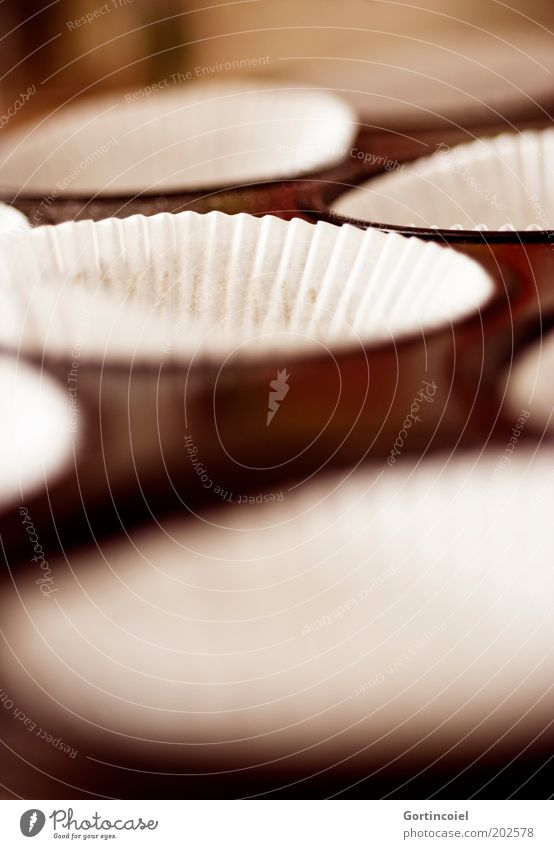 A Food Dough Baked goods Dessert Candy Nutrition Delicious Muffin Baking tin Colour photo Exterior shot Shallow depth of field Day Close-up