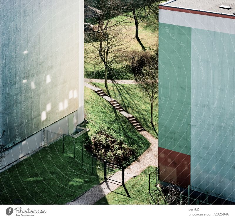 Plant Town Tree House (Residential Structure) Wall (building) Meadow Grass Building Wall (barrier) Germany Facade Bright Stairs Idyll Beautiful weather Simple