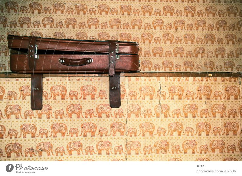 Old Wall (building) Brown Open Living or residing Decoration Retro Past Wallpaper Nostalgia Suitcase Leather Door handle Grasp Elephant Old fashioned