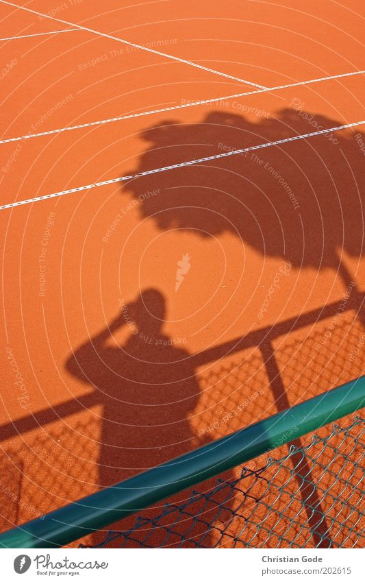 Man Green Tree Red Sports Line Orange Beautiful weather Fence Tree trunk Sports Training Photographer Tennis Take a photo Ball sports Barrier