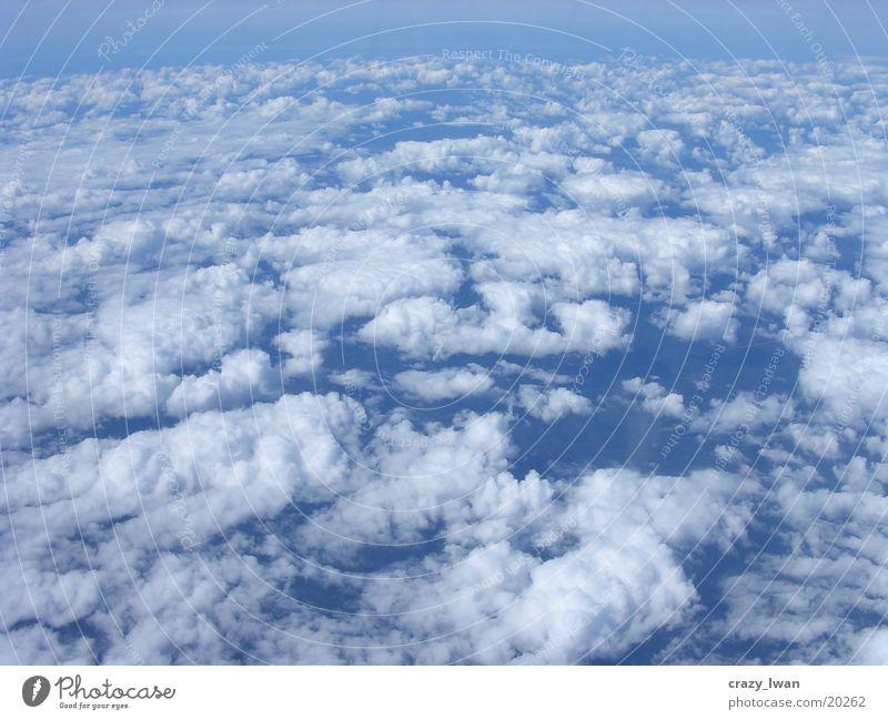 Sky Clouds Sheep Blue sky Perfect