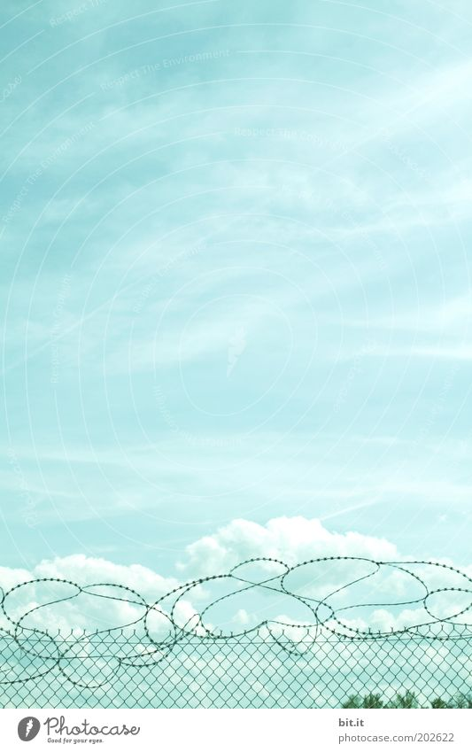 over the clouds... Air Sky Clouds Climate Fear Dangerous Inequity War Crisis Pain Distress Destruction Captured Fence Wire fence Wiry Wire netting fence