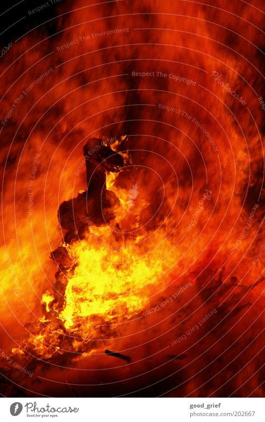 Red Black Animal Yellow Emotions Wood Fear Blaze Fire Horse Warm-heartedness Smoke Burn Elements Wooden board Flame