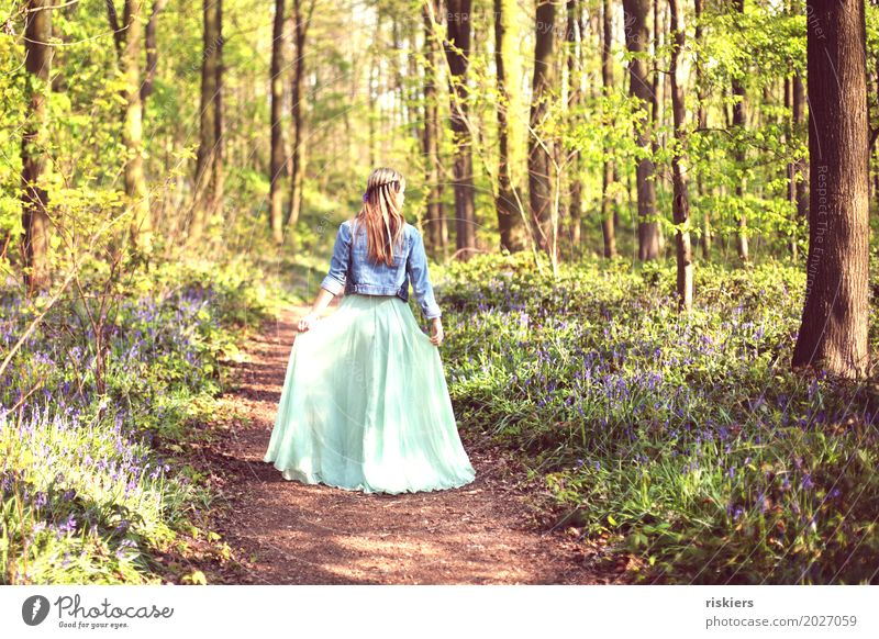 spring fairy Environment Nature Landscape Sunrise Sunset Spring Beautiful weather Park Forest Observe Blossoming Looking Illuminate Esthetic Blonde Free