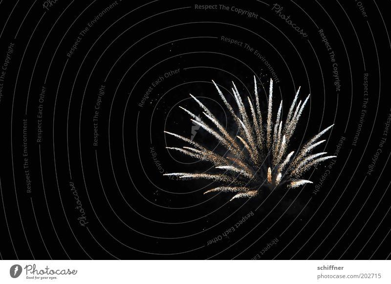 Sky Flower Feasts & Celebrations Glittering New Year's Eve Firecracker Jubilee Night life Explode